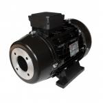 Двигатель Nicolini HD 4.0