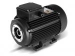 Двигатель EME 6.3 + Termic