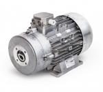 Двигатель Mazzoni 11,0 + Term