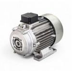 Двигатель Jettos 5,5 + Term(HD) с муфтой